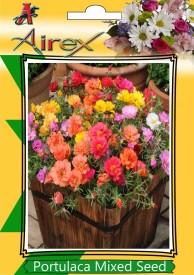 Airex Portulaca Mixed (Summer) Flower Seeds (6 Packet Of Portulaca Mixed) pack of 240 Seeds per Packet Seed(240 per packet)