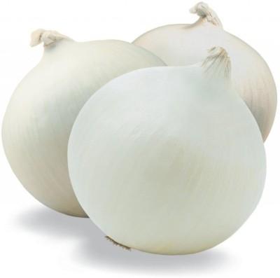 Kraft Seeds Onion White Seed