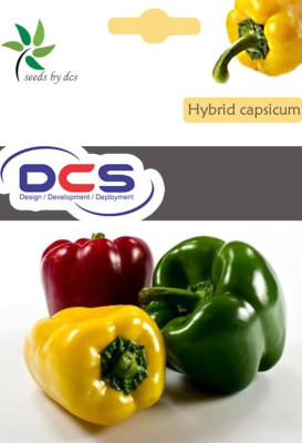 DCS Capsicum Seed(50 per packet)