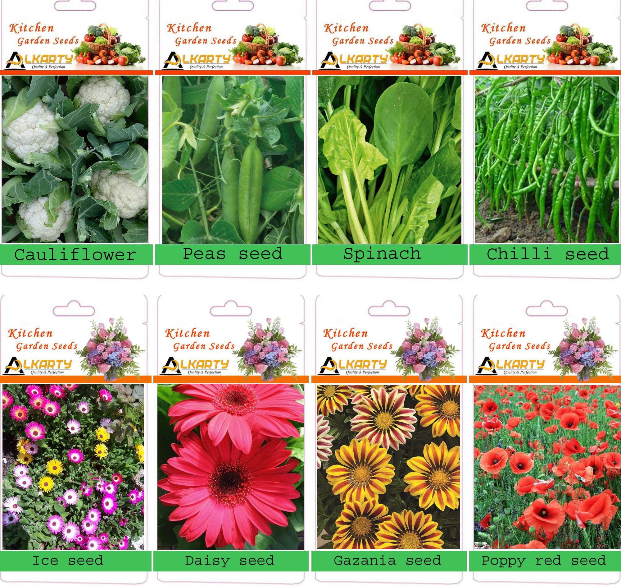 kitchen garden seeds online india container gardening ideas vegetable seeds flower grow bags online india