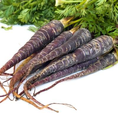 Biocarve Carrot Black Wonder Seed