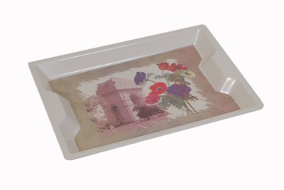 Exceed Solid Melamine Tray