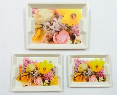 Rekha Orchidglow Printed Melamine Tray Set
