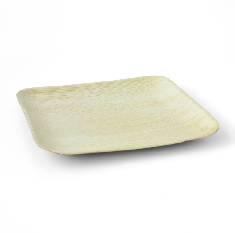 Teba 10 Square Flat Solid Areca Leaf Plate(Beige, Pack of 25)