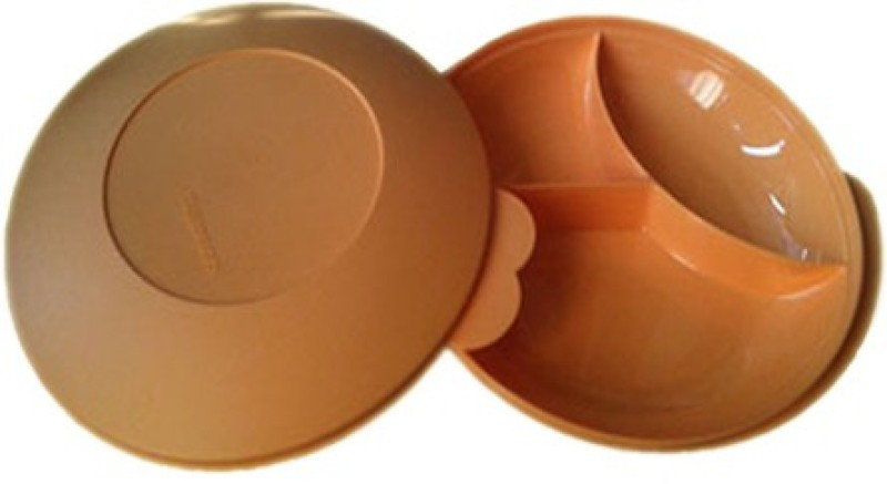 Tupperware Large Divided Solid Plastic Dish(Orange, Pack of 1)