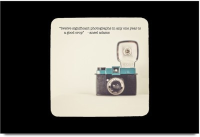 RangeeleInkers PhotoGrapher Quotes Laminated Poster Paper Print(12 inch X 18 inch, Framed)