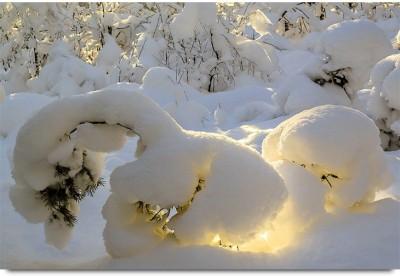 Sunrise Fresh Snow Nature Trees Nature Paper Print