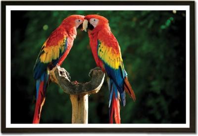 Framed Romantic Parrots Couples Paper Print