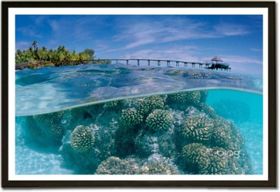 Framed Tropical shore above and below sea surface Nature Paper Print