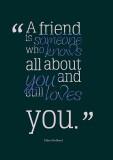 Friend Love Quote A4 Cotton Canvas High ...