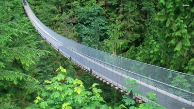 Athah Fine Quality Capilano Suspension Bridge in Canada poster Paper Print