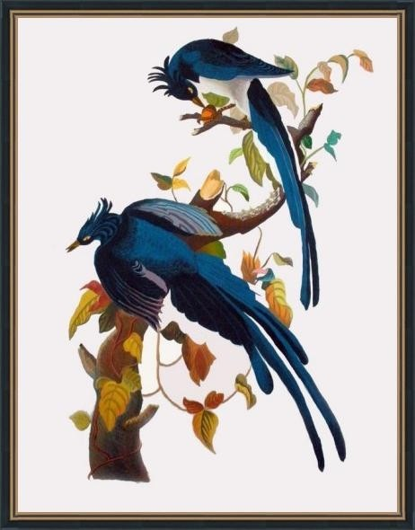 Blue Birds - ArtsNyou Printed Paintings Canvas Art