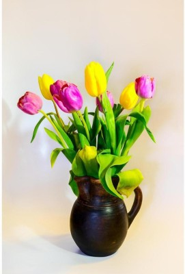 Violet And Yellow Tulips Premium Poster Paper Print