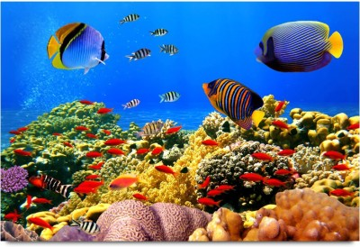 The Deep Sea Beauty Aquarium Style Paper Print
