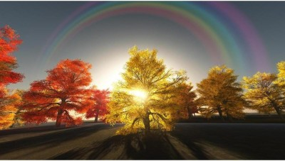 Rainbow Over Autumn Trees Premium Poster Canvas Art