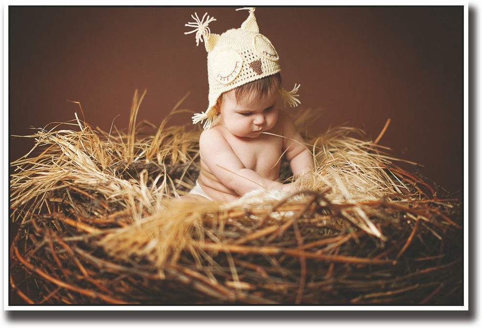 Baby in a cute nest Fine Art Print