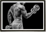 Framed Dumbbells makes Biceps Body Build...