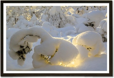 Framed Sunrise Fresh Snow Nature Trees Nature Paper Print