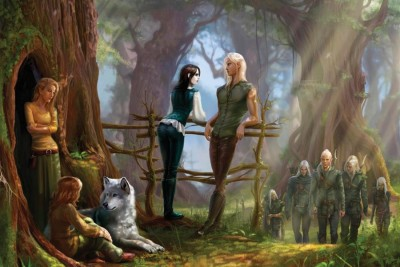 Elves Fence Forest Wolf Paper Poster 12