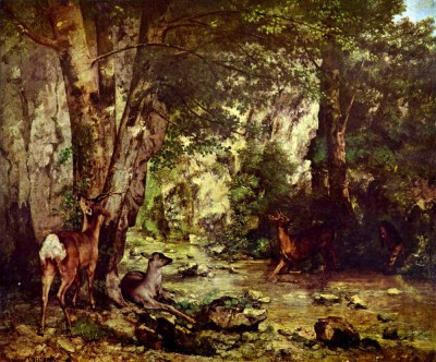 Deer in the Woods by Courbet Paper Print