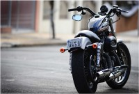 Harley Davidson Back Photographic Paper