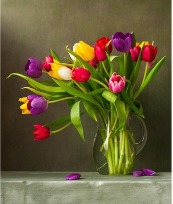 Still Life With Colorful Tulips Framed Art Print Canvas Art