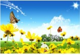 Nature poster,collection of beautiful na...