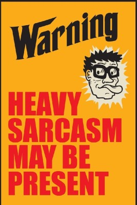 Seven Rays Warning Heavy Sarcasm May Be Present Paper Print(18 inch X 12 inch)