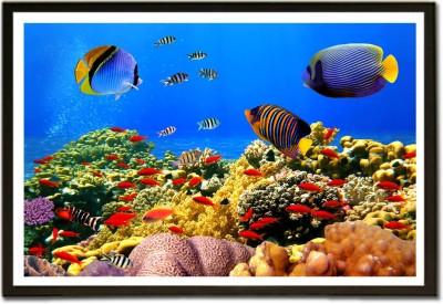 Framed The Deep Sea Beauty Aquarium Style Paper Print
