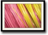 Colourful pink and yellow wires Fine Art...