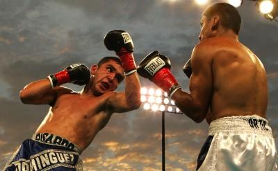 Sports Boxing Rafael Ortiz Ricardo Dominguez HD Wall Poster Paper Print
