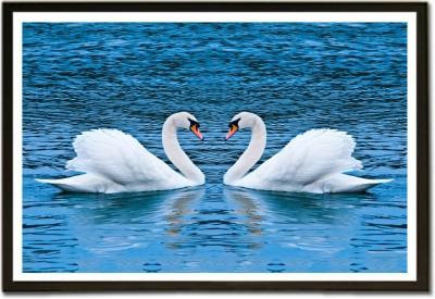 Swan couples Paper Print