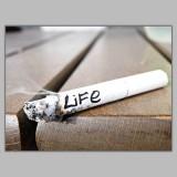 Athah Frameless Poster Life Cigarettes P...