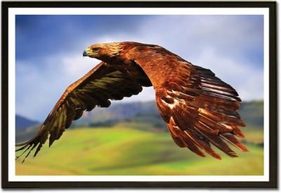 Framed High Flying Eagle Paper Print