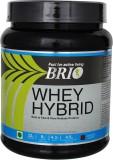 Brio Whey hybrid Whey Protein (500 g, Ch...