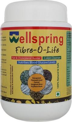 Wellspring Fiber-O-Life Whey Protein