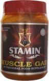 Stamin Mass Gainers (1 kg, Chocolate)