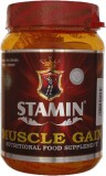 Stamin Muscle gain Mass Gainers (1000 g,...