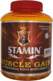 Stamin Muscle gain Mass Gainers (2000 g,...