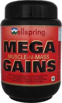 Wellspring Mega Whey Protein