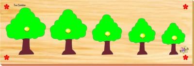 Kinder Creative Tree Seriation