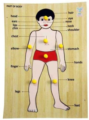 Luk Luck Educational Wooden Toy Part Of The Body