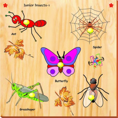Kinder Creative Junior Insects with Knobs