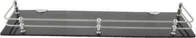 Dolphy Acrylic 18 x 5 inch Stainless Steel Wall Shelf