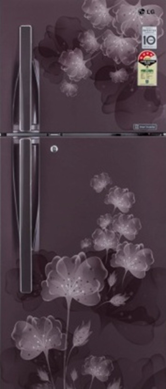 View LG 255 L Frost Free Double Door Refrigerator(GL-F282RGFL, Graphite Florid, 2016)  Price Online