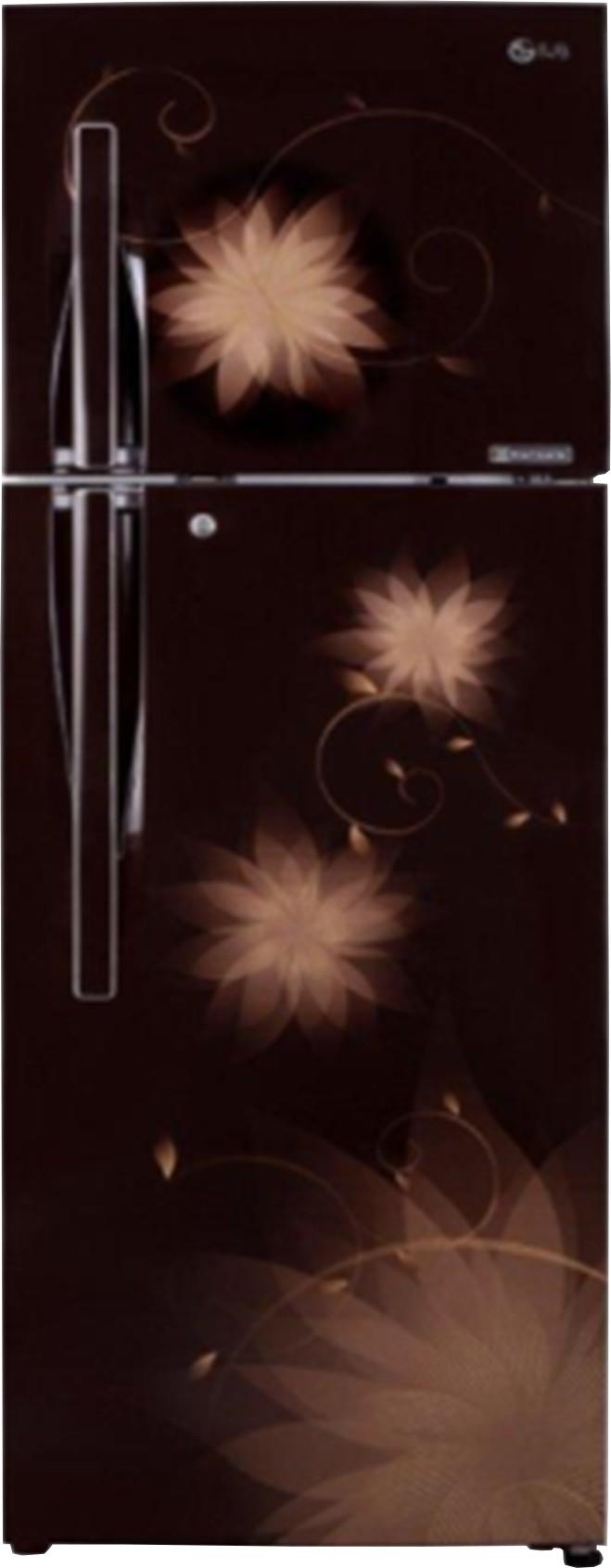 LG 260 L Frost Free Double Door Refrigerator (LG)  Buy Online