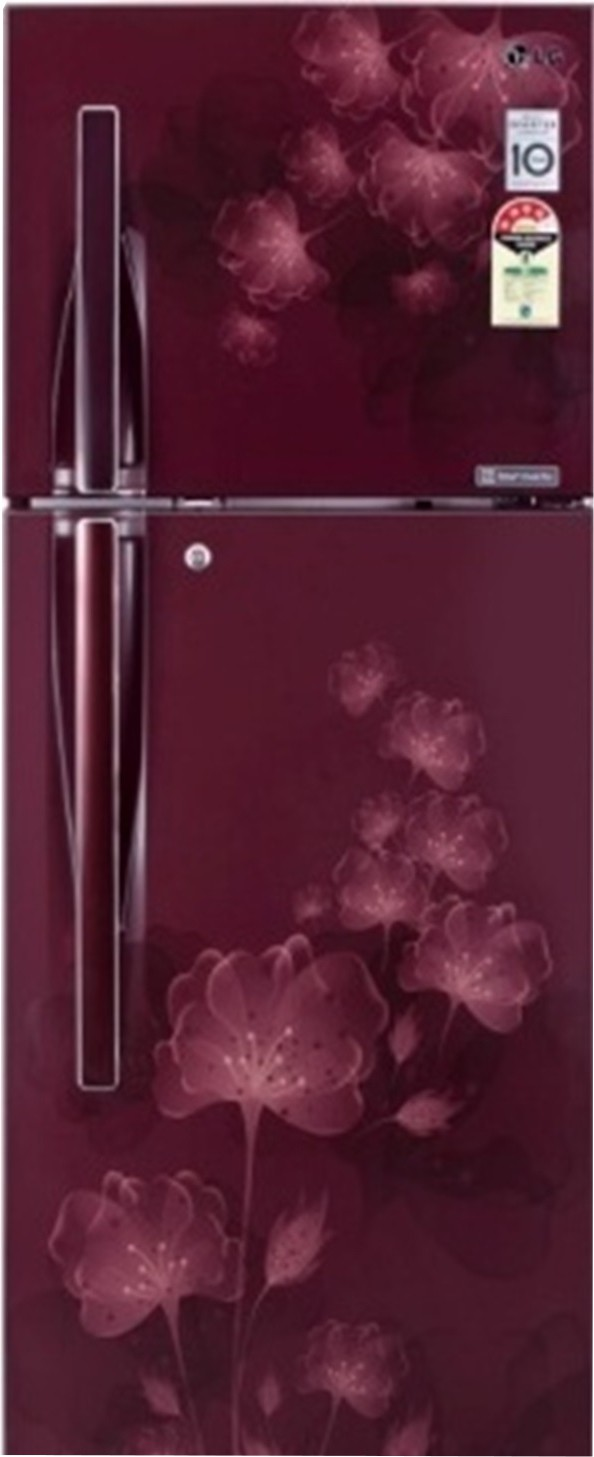 LG GL I322RSFL 308Ltr Double Door Refrigerator