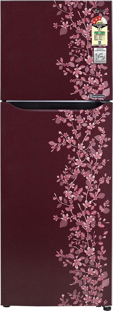 View LG GL-B282SSPM 255 L Double Door Refrigerator  Price Online