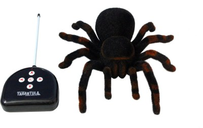 INDIAKAAPNA REMOTE CONTROL SPIDER