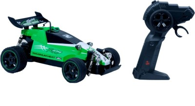 Montez Racing Speed King 1:16 Scale Remote Control Car - green